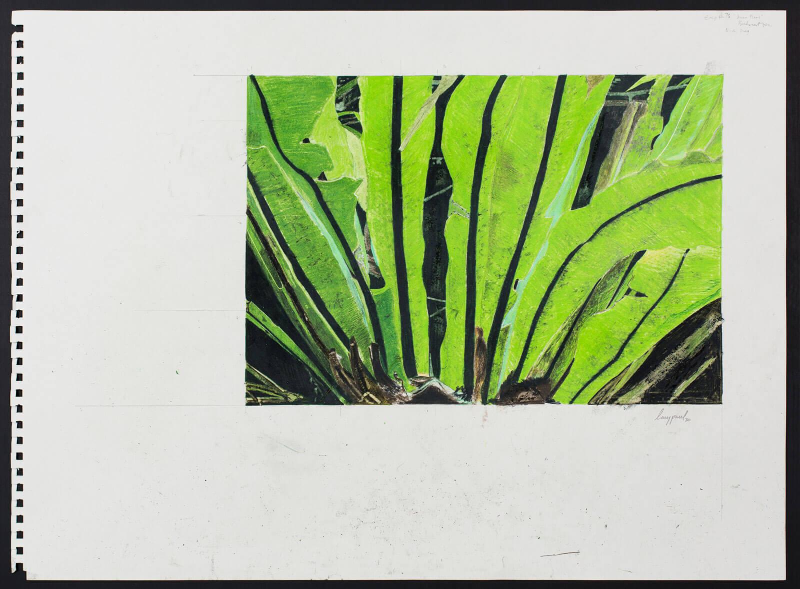Plant Exp. 73